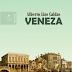 Entre a máscara e a revelação no romance Veneza, de Alberto Lins Caldas