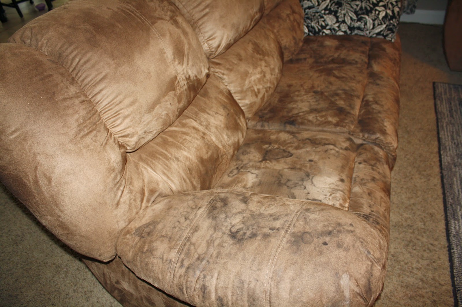 Couch Gross Tada S Kooky Kitchen How To Clean Microfiber Couches And Get The