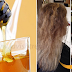Natural Two Ingredient Hair Mask That Will Treat Frizzy Hair In One Month Without Spending Too Much Money
