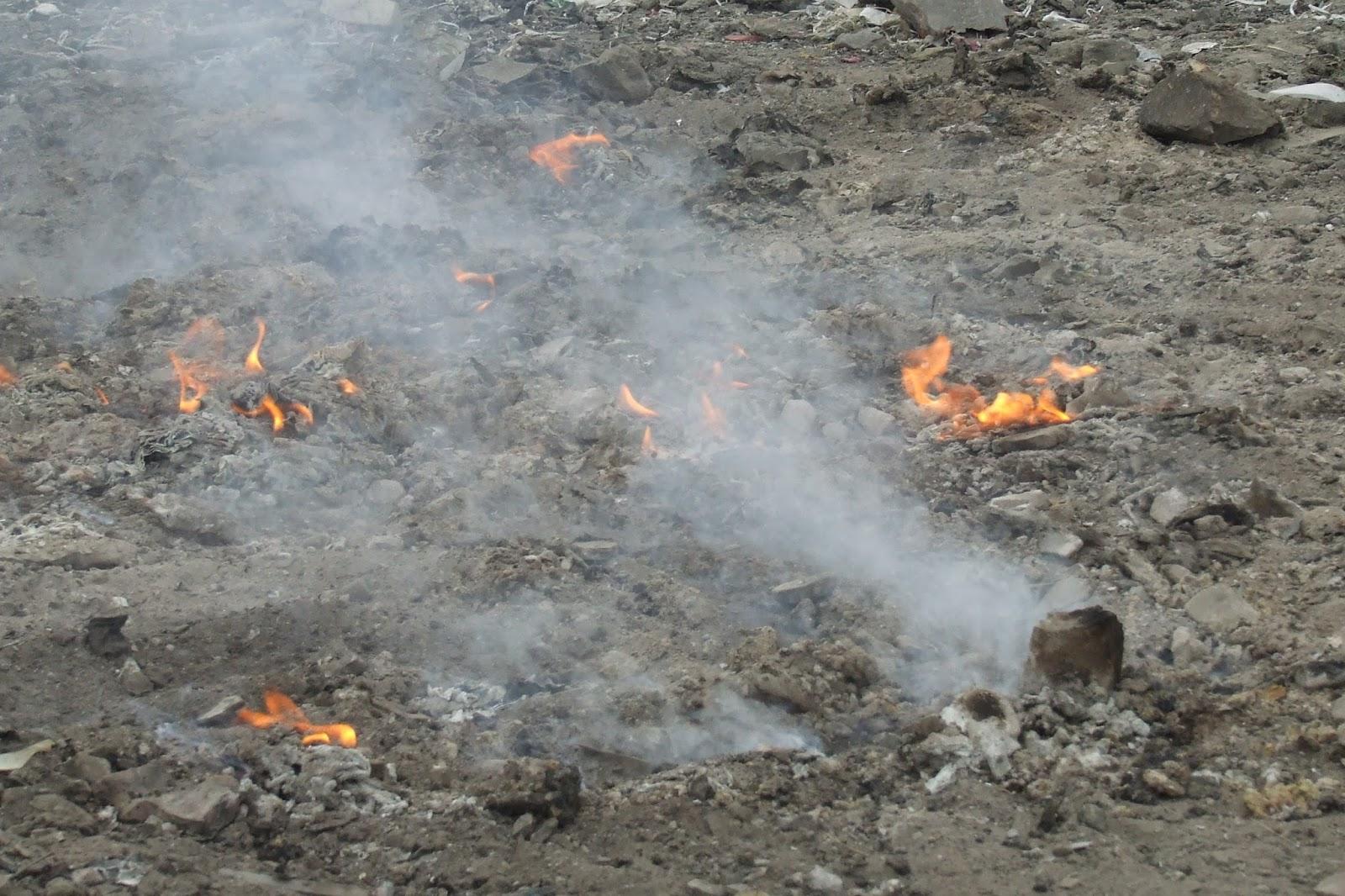 Athreya Kidambi Kavitha Kidambi Environmental Pollution