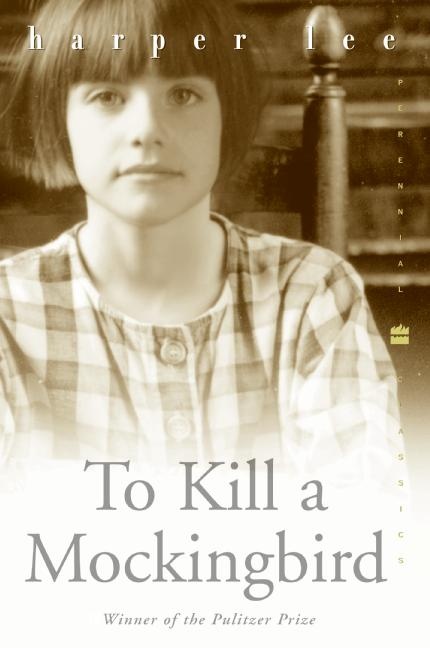 My review on how to kill a mockingbird by harper lee
