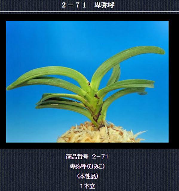 http://www.fuuran.jp/2-71html