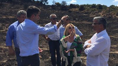 Μπακογιάννης, Παπαθωμά και Περγάλιας επισκέφθηκαν τα Δερβενοχώρια - Ευχαριστίες από τον Περιφερειάρχη στην Πυροσβεστική, την Πολιτική Προστασία και τον Δήμο Τανάγρας