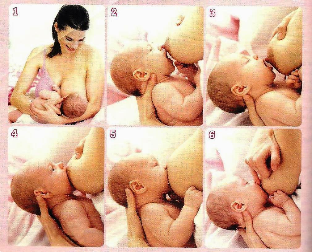Info Kesehatan Ibu dan Anak: Cara Menyusui Bayi Baru Lahir