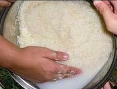 membuat mol dari air cucian beras sangat bagus untuk tanaman