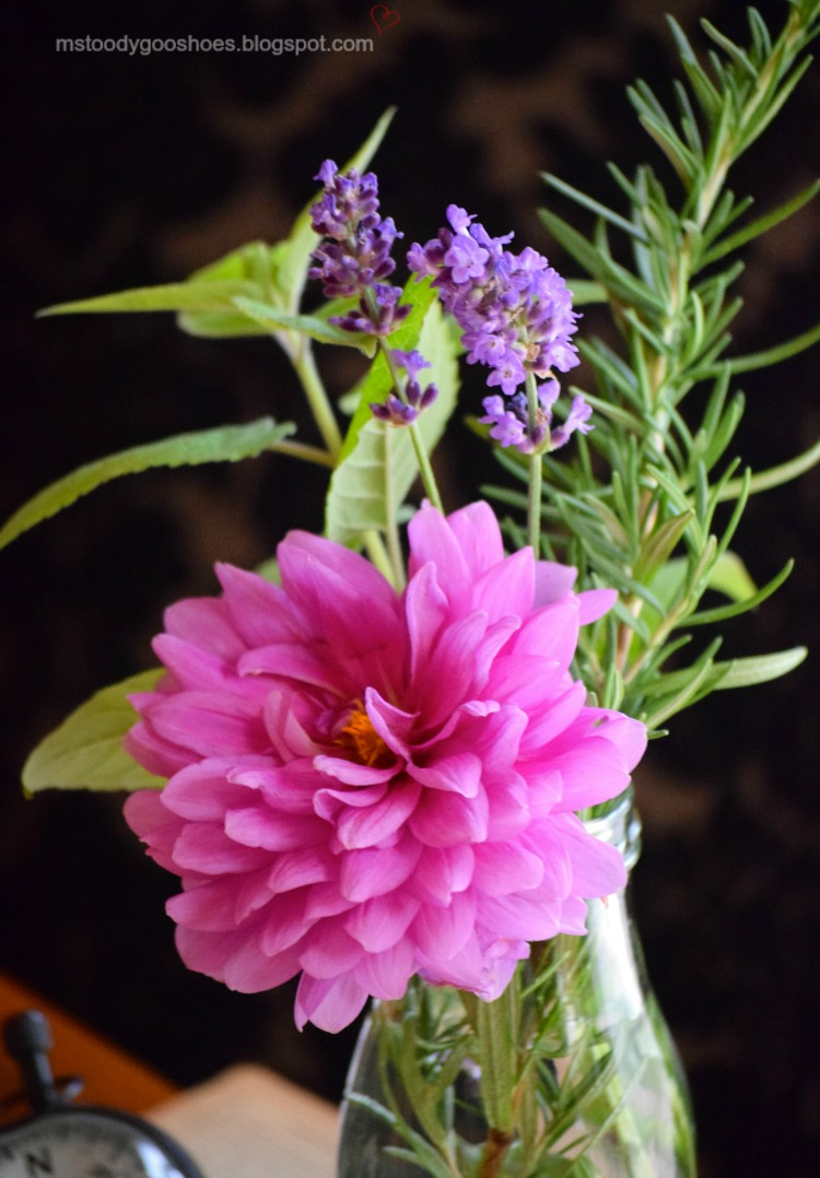 Add some herbs to your flower arrangements - the aroma is intoxicating!   Ms. Toody Goo Shoes