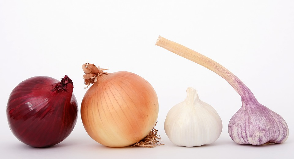 Why Should You Care About the Calories In Red Onions, White, Green, Sweet And Yellow Onions