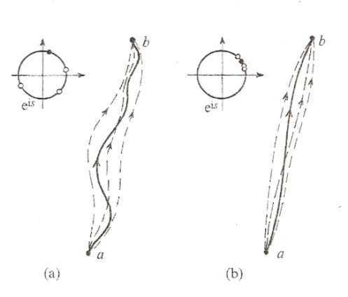 MuonRay: The Path Integral Interpretation of Quantum Mechanics