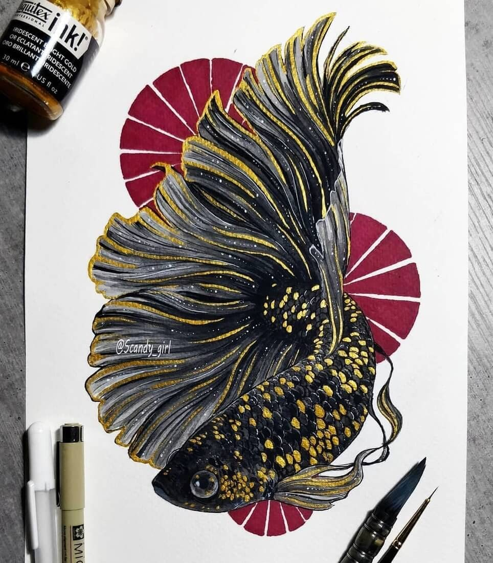 09-Betta-Fish-Jonna-Hyttinen-Animals-Mixture-of-Drawings-and-Paintings-www-designstack-co