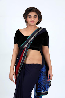 sheril virani in saree6