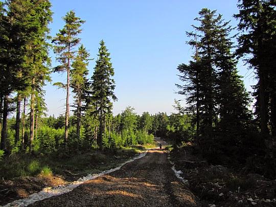 Niebieski szlak na Jagodną.