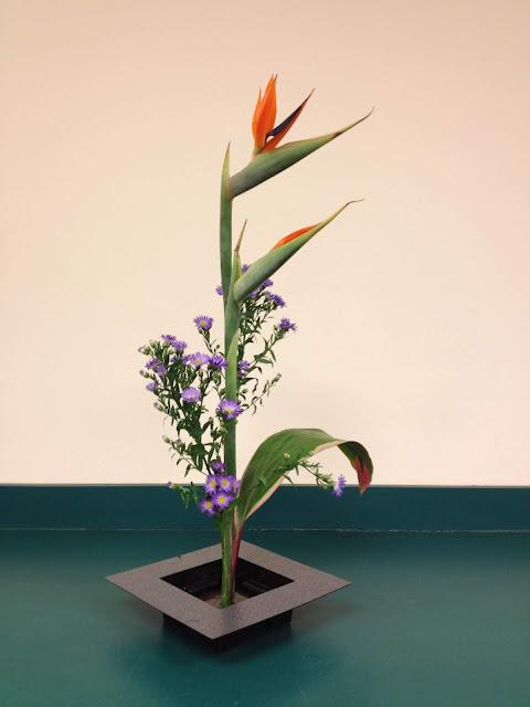 Đây là phong cách cắm hoa thông dụng nhất trong Ikebana, nó có nghĩa là hoa sống. Xét về hình thức thì kiểu cắm hoa Shoka khá đơn giản nhưng để lột tả hết ý nghĩa của nó thì không phải ai cũng làm được. Một bình hoa shoka đạt yêu cầu là sự hội tụ đủ 3 thành phần: Ten, Chi và Jin nghĩa là Trời, Đất và Con người.    Shoka là phong cách cắm hoa được đơn giản hóa từ phong cách cắm theo kiểu thẳng đứng Rikka để phù hợp với nhiều tầng lớp dân chúng. Shoka thể hiện vẻ đẹp giản dị của tự nhiên bằng việc sử dụng ít cành lá nhưng thể hiện sự vươn lên hướng về mặt trời. Shoka theo thuyết Thiên – Địa – Nhân, trong đó có 3 cành chính với tên gọi là Shin – Soe – Tai, tượng trưng cho sự hòa hợp của Trời, Đất và Con người. Người Nhật thường dùng phong cách cắm hoa Shoka để trang trí nhà cửa trong những ngày đầu Năm Mới.
