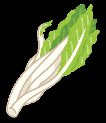 雪菜のイラスト