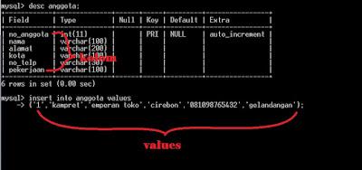 Membuat Database Koperasi Simpan Pinjam