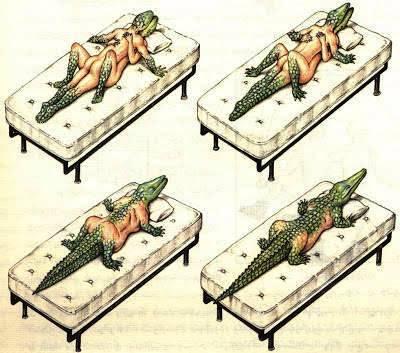 Alligator - Misteri Manuskrip Kuno Codex of Seraphinianus