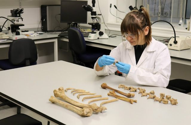 Bone study sheds new light on the history of Britain's weaning habits