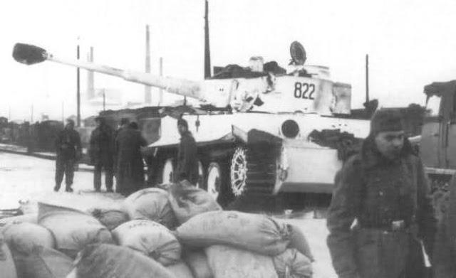 Tiger «822»
