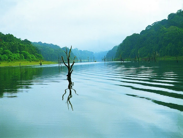 Kerala Travel Guide - Thekkady