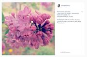 I ja na instagramu!