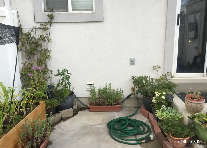 Raised bed and container garden // www.thejoyblog.net
