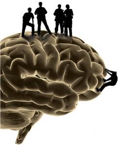Cerebro y Nutrición. Sobre proteínas, carbohidratos y grasas
