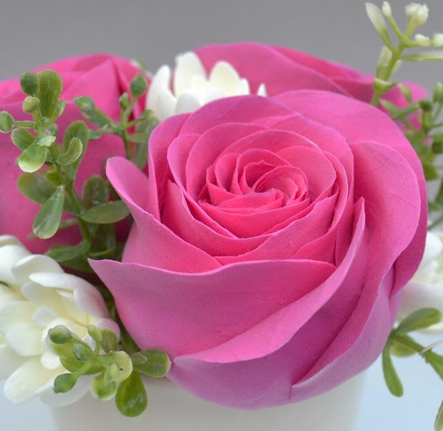 magenta roses wallpaper - photo #11