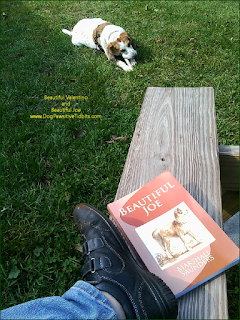 Reading Beautiful Joe with my dog Valentino