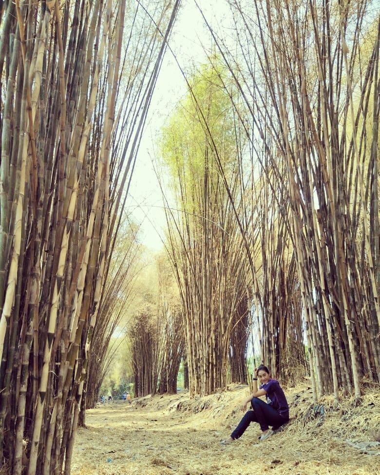 Pemkot Bekasi Harus Perhatikan Lokasi Wisata Hutan Bambu Masih