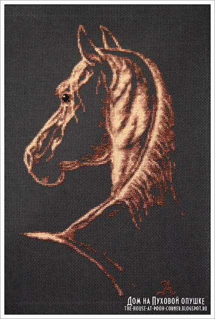 Counted cross stitch embroidery horse