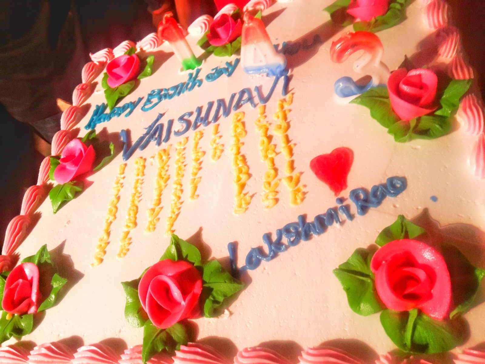 Vaishu 14th Birthday Pics At Kakinada 31 12 2015 Vaishnavi Pics