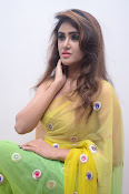 Sony Charista sizzling look in saree-thumbnail-9