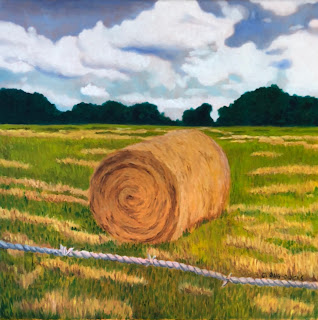 Roll of Hay - Copyright C. Ong-Dijcks