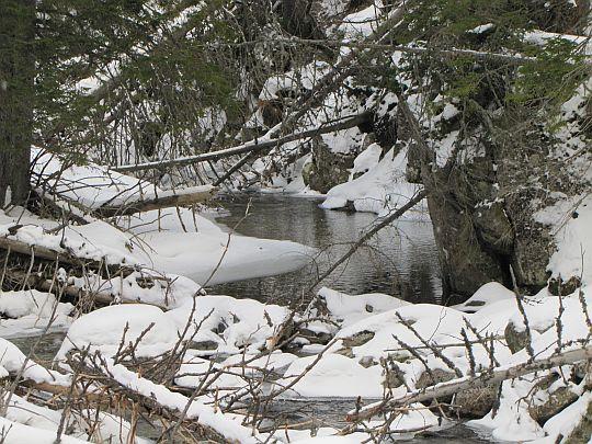 Zimna Woda (słow. Studený potok).