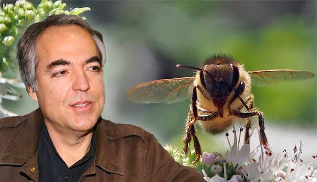 Την ανησυχία τους ότι θα επιστρέψει στη μελισσοκομία ο Δημήτρης Κουφοντίνας εκφράζουν οι...