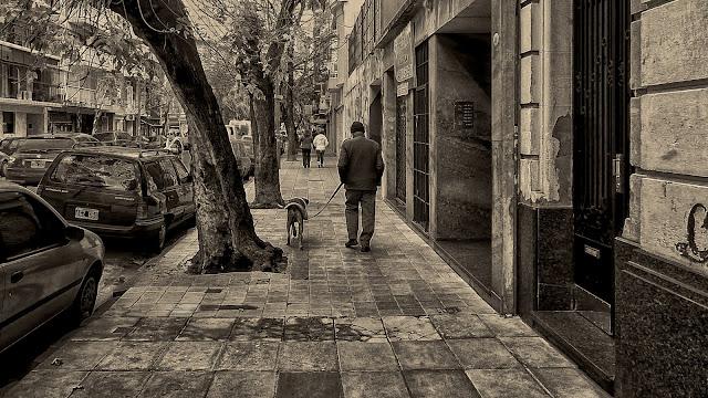 Una vereda ,un hombre paseando su perro.Blanco y negro