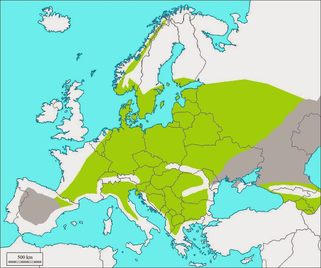 Cartina Italia Anno 500.Maldestro Veloce Esso Carta Muta D Europa Fasce Climatiche Arrabbiato Combattere India