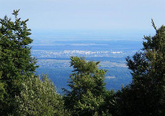 Widok na Truskawiec (ukr. Трускавець)