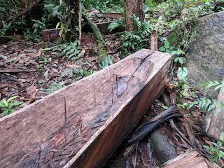 dugout canoe stern in el Oriente, Ecuador