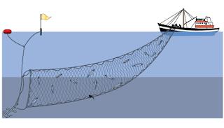 Alat Tangkap Gill Net