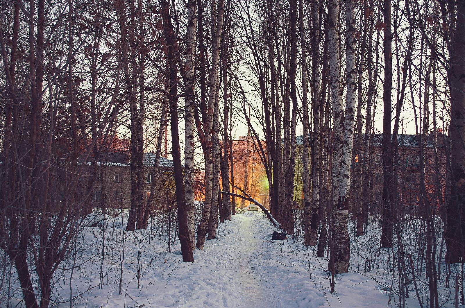 Утро понедельника. Рассвет на реке Ижора
