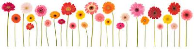 https://4.bp.blogspot.com/-MT44L9_K2bM/Vz9E7O4qKRI/AAAAAAAAH_o/tLG2npRT93YYUhxvvH8Ewt6vkmQIFCjjwCLcB/s400/flowers_row.png