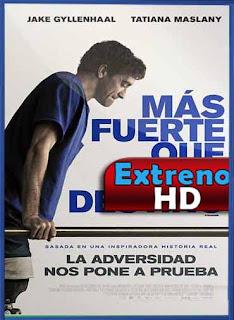 Más fuerte que el destino (2017) | DVDRip Latino HD GDrive 1 Link