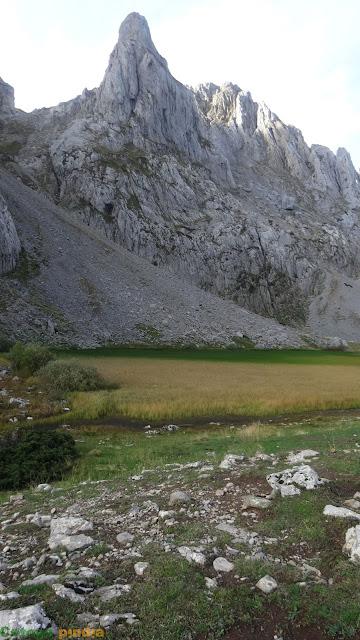 Laguna las Verdes cubierta de vegetación que le da su nombre