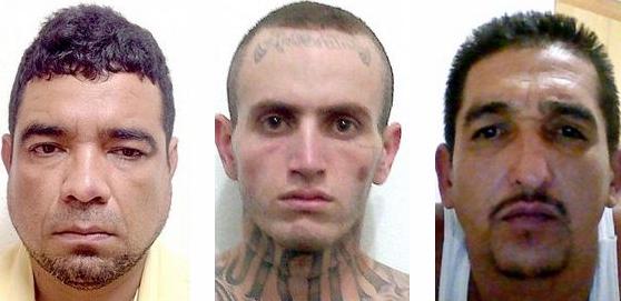 """Pedro """"El Peter"""" Cisneros, Sergio """"El Scar"""" Beltran, Rogelio """"El Tyson"""" Franco"""