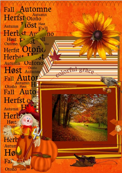 Nov.2016 Greetingscard bonus Colorful grace small
