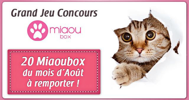 mademoiselle bons plans blog voyage blog c te d 39 azur concours 20 miaoubox pour votre chat. Black Bedroom Furniture Sets. Home Design Ideas