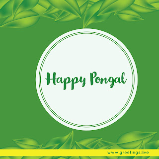 South Indian Happy Pongal festival Greetings High quality image