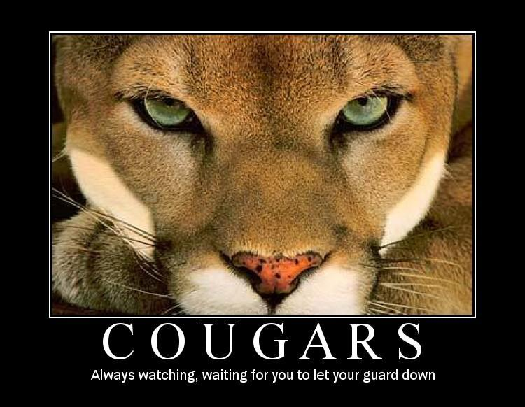 Funny cougar images
