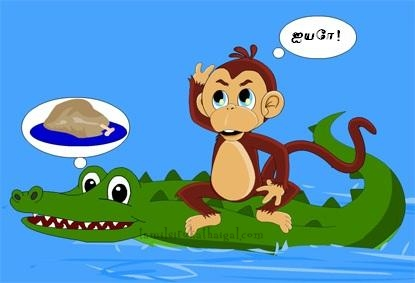 Monkey and the Crocodile 5