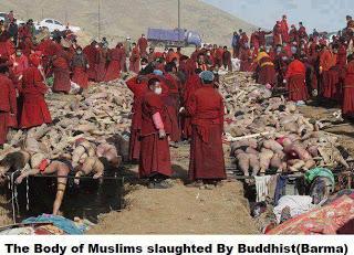 1 Fakta Dan Kebenaran Rohingya Pembantaian Umat Muslim Di Myanmar